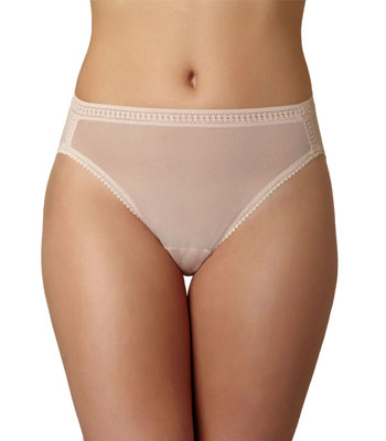 Mesh Hicut Brief